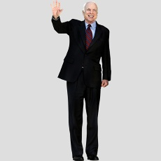 mccain-fathead