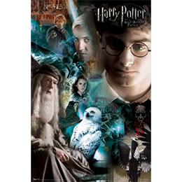 HP &amp; HBP poster