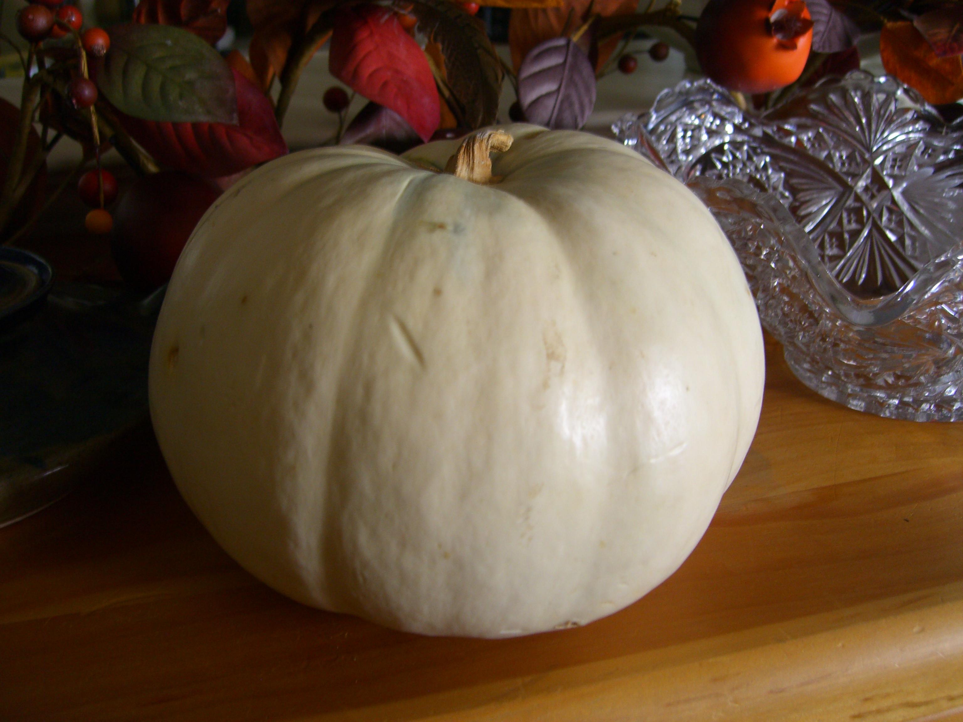Friday foodie fix pumpkins